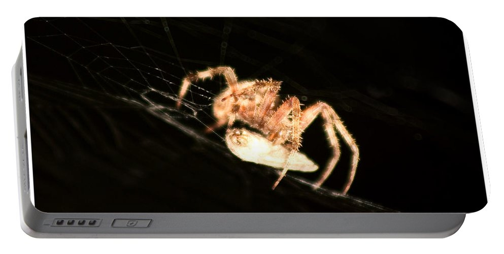 Spider Portable Battery Charger featuring the photograph Orb Spider by Anthony Jones