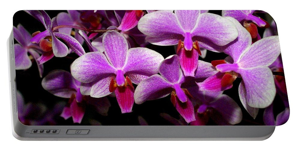 Flower Portable Battery Charger featuring the photograph Orchid 12 by Marty Koch
