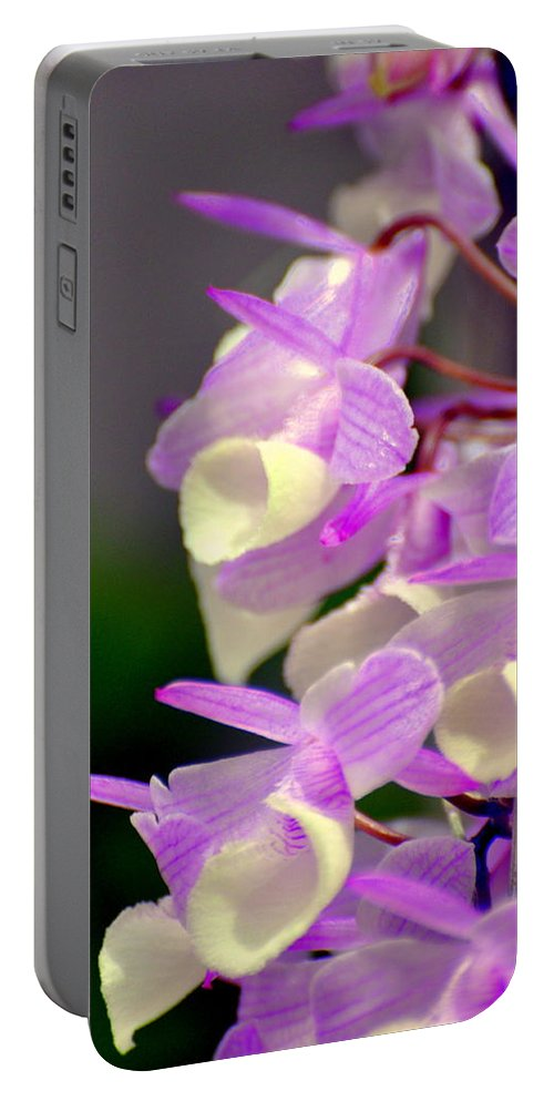 Orchid Portable Battery Charger featuring the photograph Orchid 25 by Marty Koch
