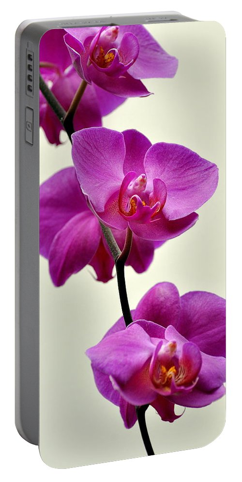 Orchid Portable Battery Charger featuring the photograph Orchid 26 by Marty Koch