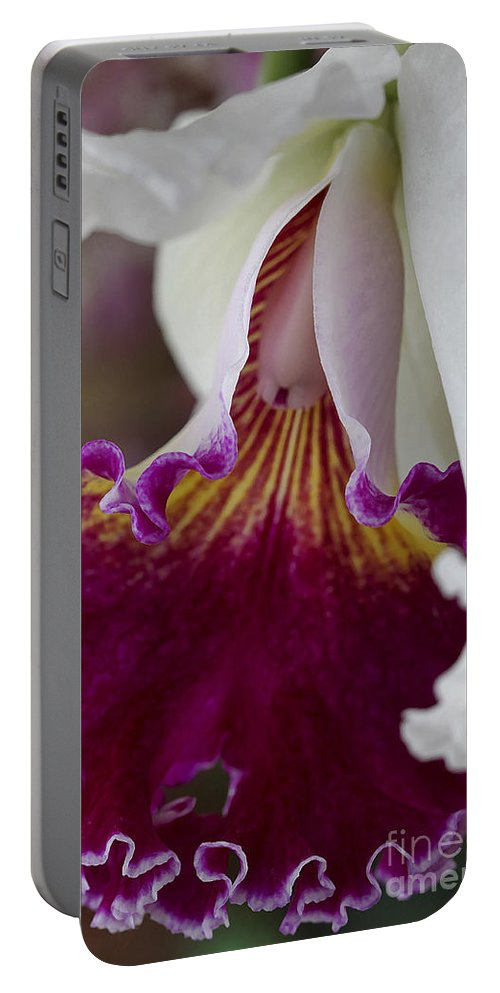 Orchid Portable Battery Charger featuring the photograph Orchid Ruffle by Deborah Benoit