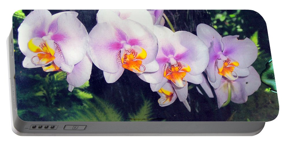 Orchids Portable Battery Charger featuring the photograph Orchids Of Hawaii by Dina Holland