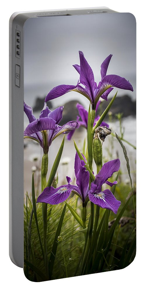 Oregon Coast Portable Battery Charger featuring the photograph Oregon Iris At The Beach by Robert Potts