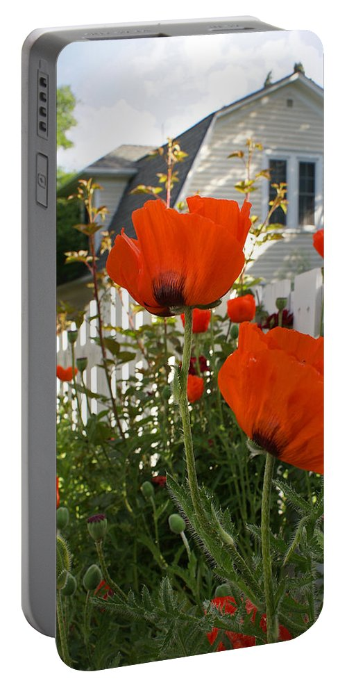 Poppies Portable Battery Charger featuring the photograph Oriental Poppies by Heather Coen