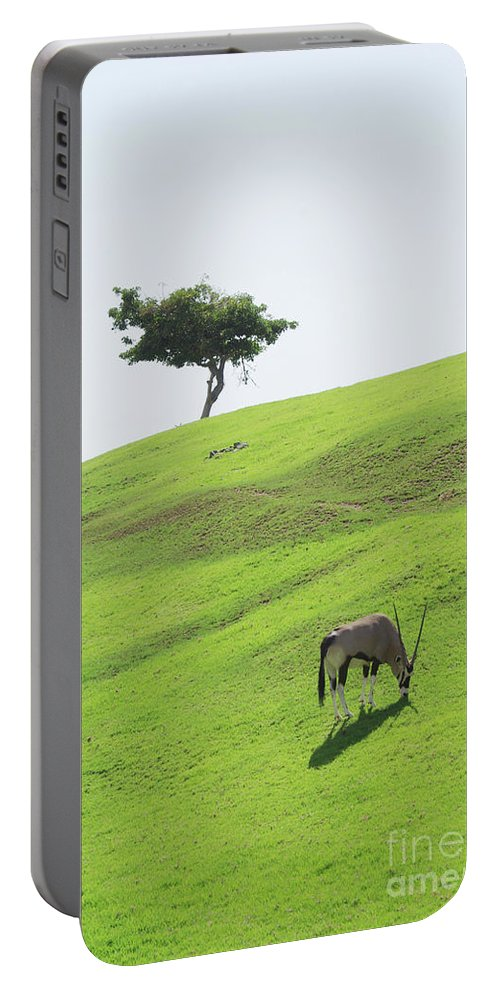 Oryx Portable Battery Charger featuring the photograph Oryx On Hill by Jim And Emily Bush