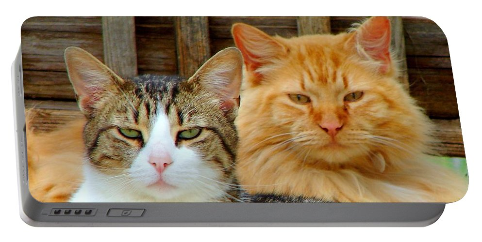 Cats Portable Battery Charger featuring the photograph Oscar And Red by J R Seymour
