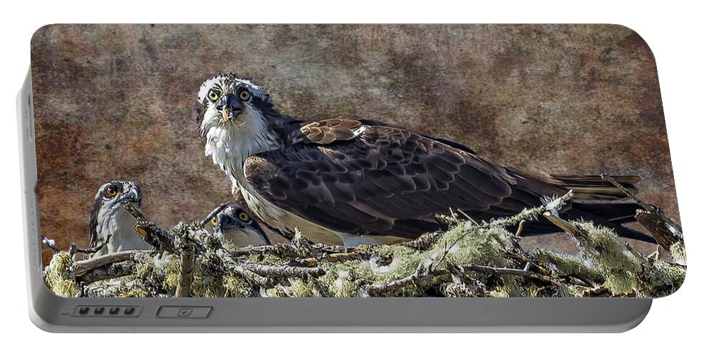 Osprey Portable Battery Charger featuring the photograph Osprey And Young - Feeding by Belinda Greb