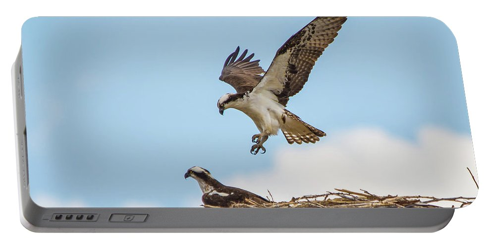 Osprey Portable Battery Charger featuring the photograph Osprey Approach by David F Hunter