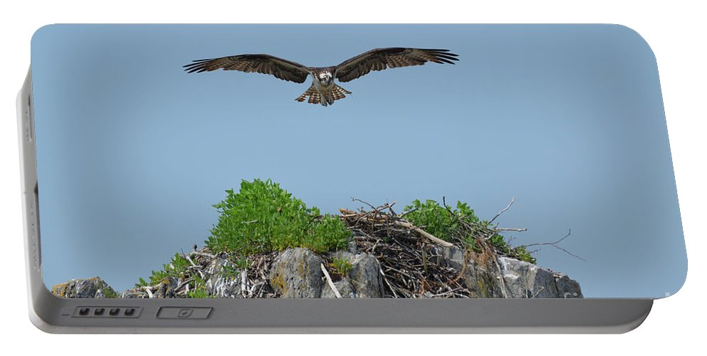 Osprey Portable Battery Charger featuring the photograph Osprey Flying Over A Bird's Nest by DejaVu Designs