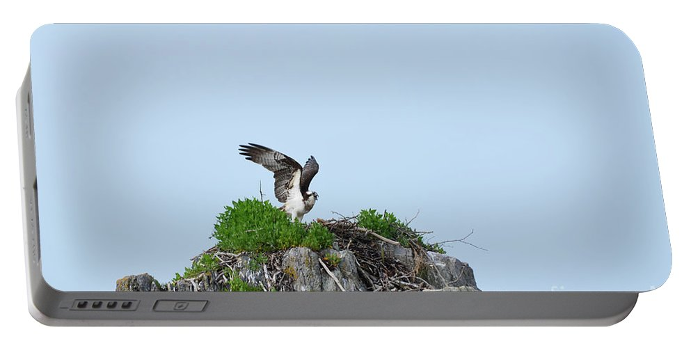 Osprey Portable Battery Charger featuring the photograph Osprey Sitting On A Ledge In Casco Bay by DejaVu Designs