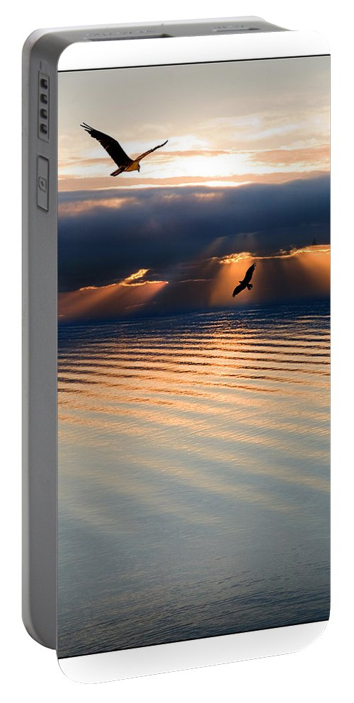 Osprey Portable Battery Charger featuring the photograph Ospreys by Mal Bray