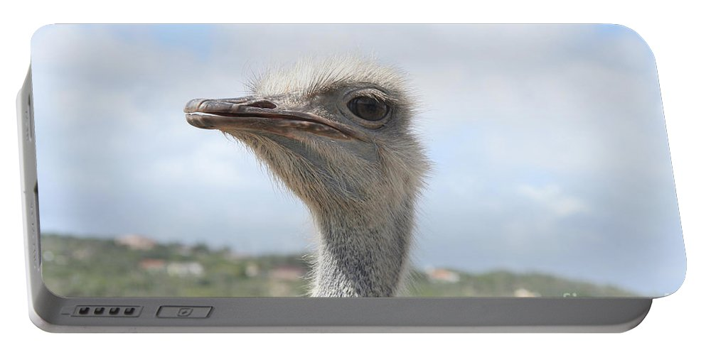 Ostrich Portable Battery Charger featuring the photograph Ostrich Head II by Thomas Marchessault