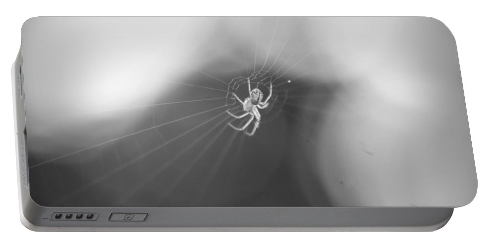 Spider Portable Battery Charger featuring the photograph Out Came The Sun by Mandy Shupp