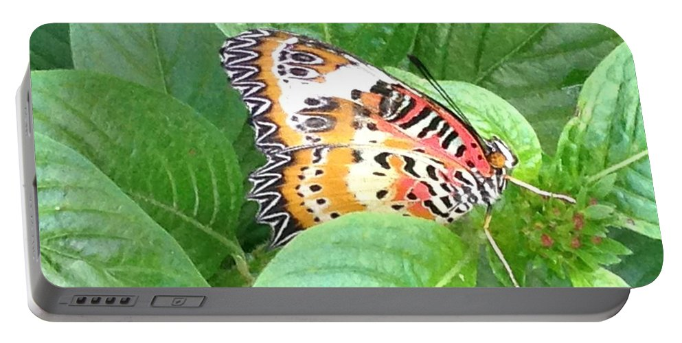 Nature Portable Battery Charger featuring the photograph Out Of Hiding by Darren Rudd