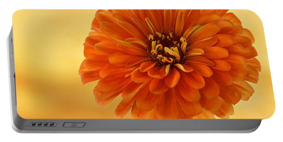Flower Portable Battery Charger featuring the photograph Outrageous Orange by Sandy Keeton