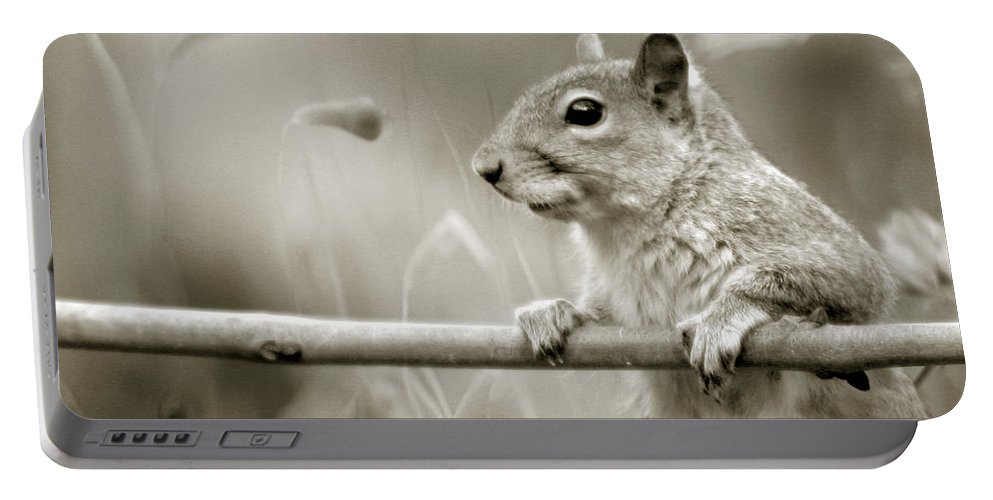 Squirrel Portable Battery Charger featuring the photograph Over The Fence In Black And White by Angel Ciesniarska