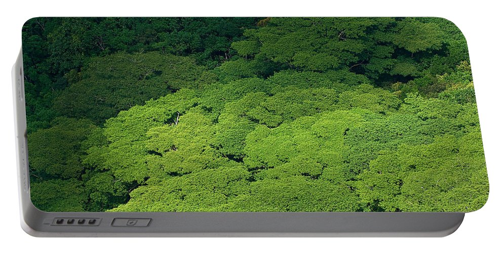 Birds Eye View Portable Battery Charger featuring the photograph Over The Treetops by Max Steinwald