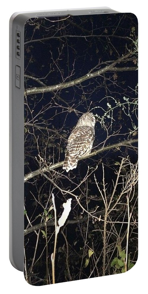 Owl Portable Battery Charger featuring the photograph Owl by Araina Adams