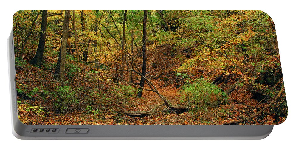 Owl Canyon Portable Battery Charger featuring the photograph Owl Canyon In Autumn 2 by Greg Matchick