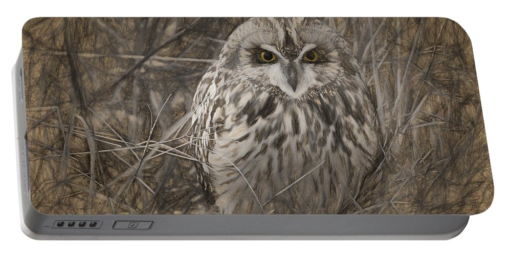 Owl Portable Battery Charger featuring the digital art Owl In The Woods by Patti Parish