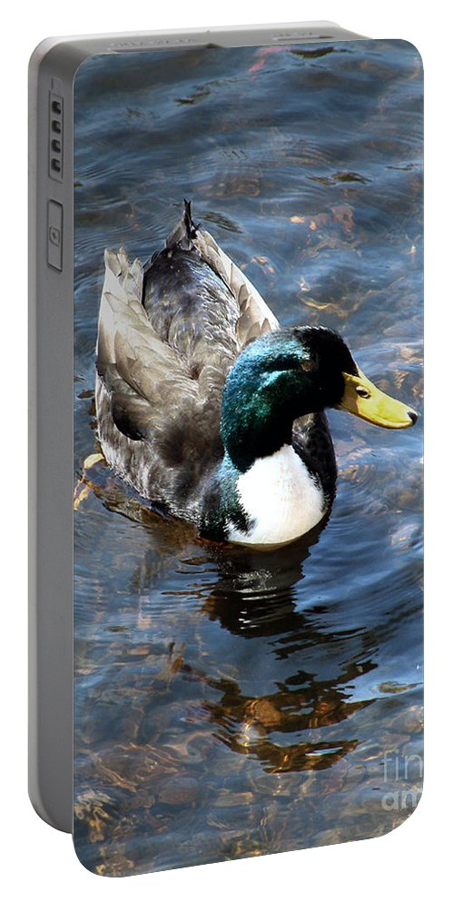 Drake Portable Battery Charger featuring the photograph Paddling Peacefully by RC DeWinter