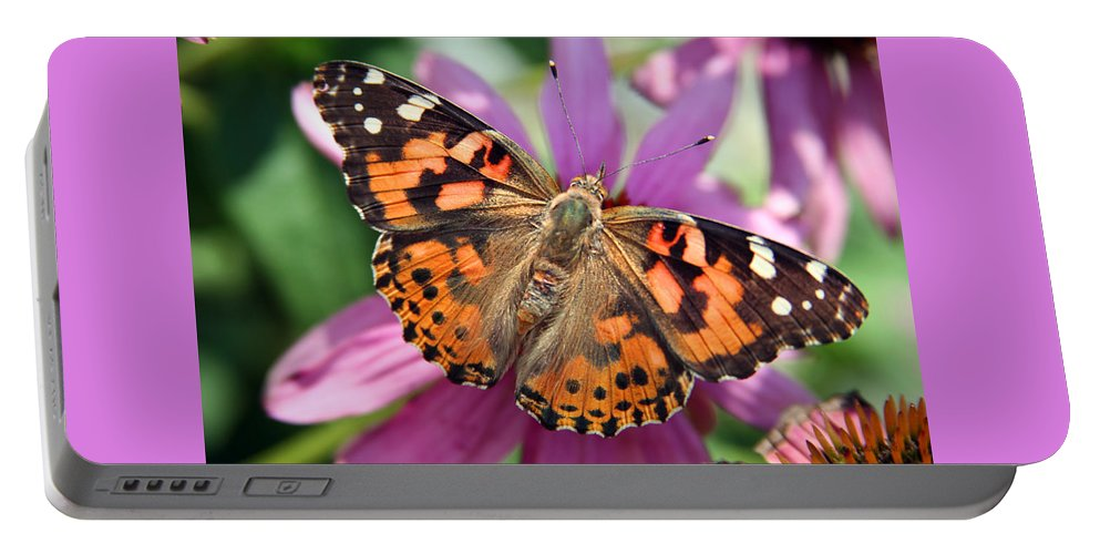 Painted Lady Portable Battery Charger featuring the photograph Painted Lady Butterfly by Margie Wildblood