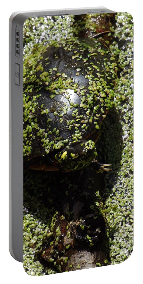 Reptile Portable Battery Charger featuring the photograph Painted Turtle Camouflague by Sara Raber