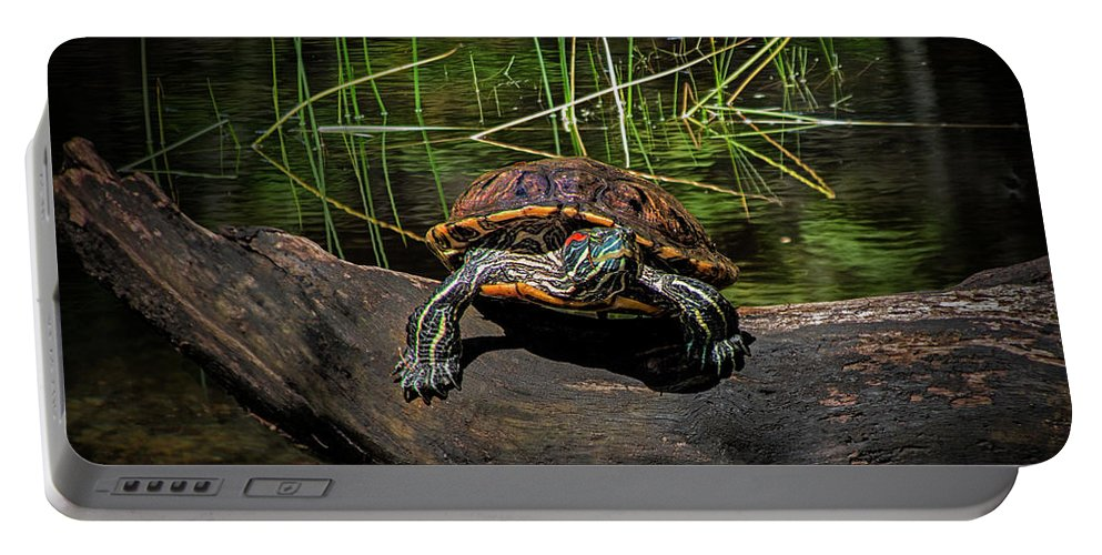 Reptile Portable Battery Charger featuring the photograph Painted Turtle Sunning Itself On A Log by Randall Nyhof