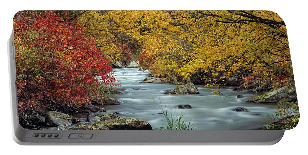 Idaho Scenics Portable Battery Charger featuring the photograph Palisades Creek by Leland D Howard