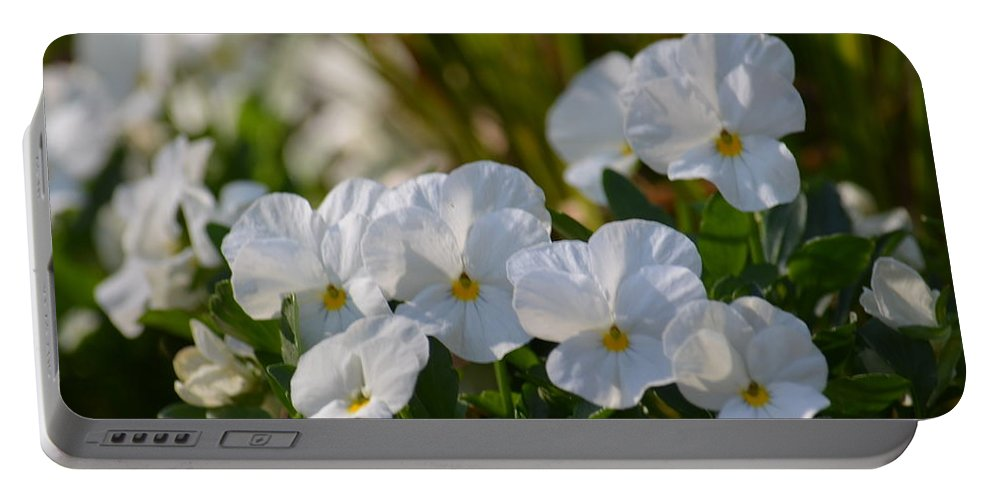Pansies 15-02 Portable Battery Charger featuring the photograph Pansies 15-02 by Maria Urso