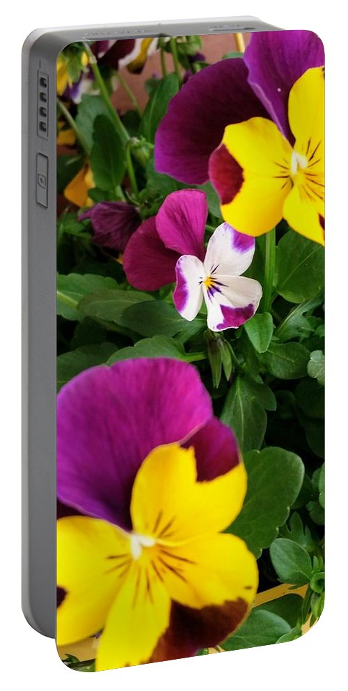 Pansies Portable Battery Charger featuring the photograph Pansies 3 by Valerie Josi