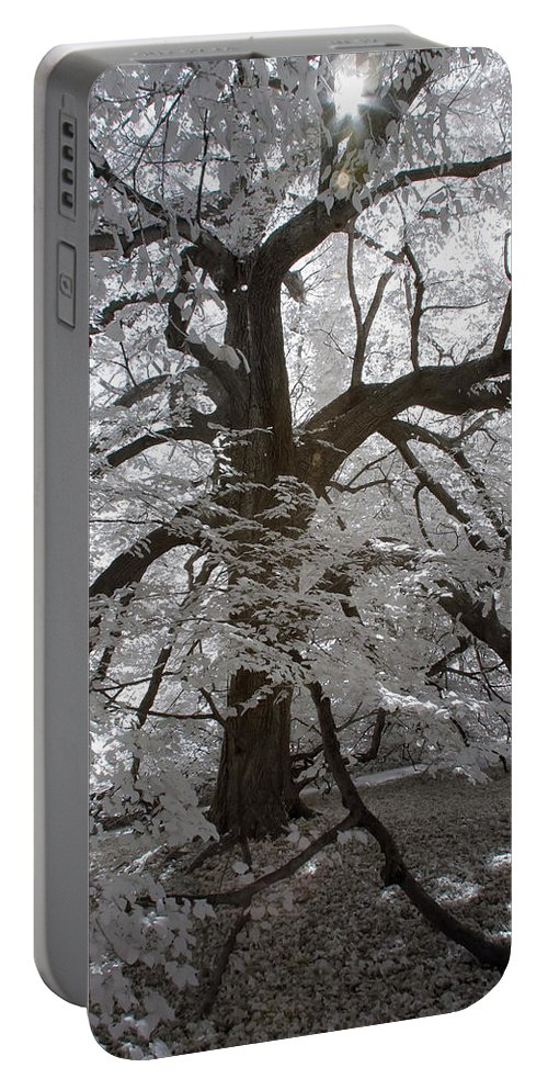 Charlottsville Portable Battery Charger featuring the photograph Paper Mulberry In Infrared by Liza Eckardt