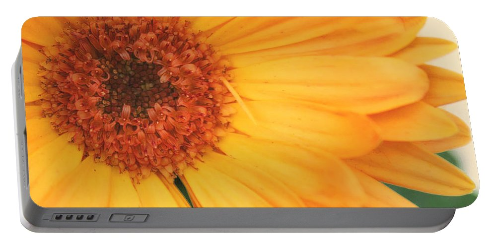 Flowers Portable Battery Charger featuring the photograph Partly Sunny by Linda Sannuti