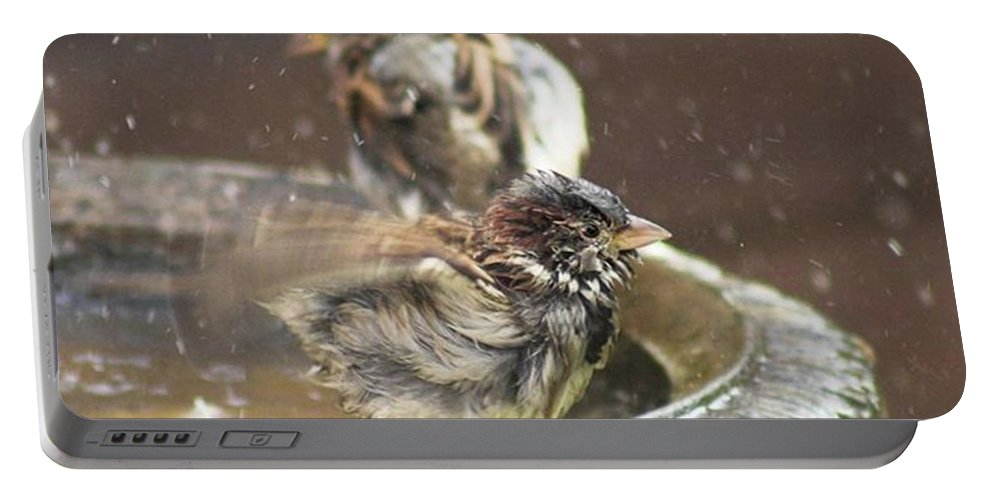 Nature Portable Battery Charger featuring the photograph Pass The Towel Please: A House Sparrow by John Edwards