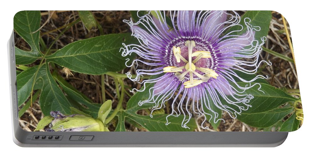 Passion Flower Portable Battery Charger featuring the photograph Passion Flower by Shutter Print