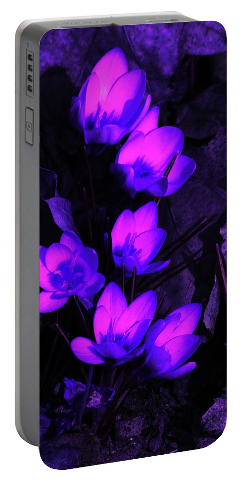 Flowers Portable Battery Charger featuring the photograph Passionate Blooms by Karol Livote