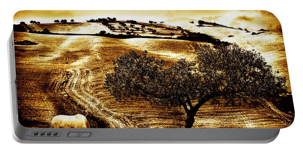 Landscape Portable Battery Charger featuring the photograph Pastelero Textures by Mal Bray