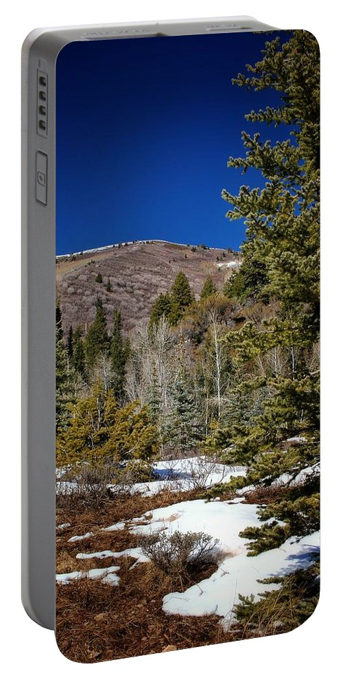 Snow Portable Battery Charger featuring the photograph Patches Of Snow by Buck Buchanan