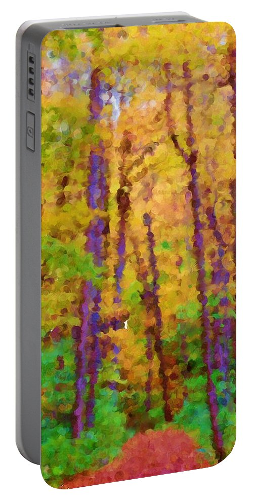 Digital Photograph Portable Battery Charger featuring the photograph Path In The Woods by David Lane