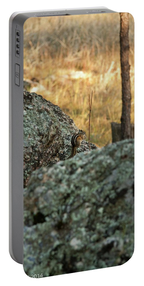 Chipmunk Portable Battery Charger featuring the photograph Pause For Dinner by Deanna Paull