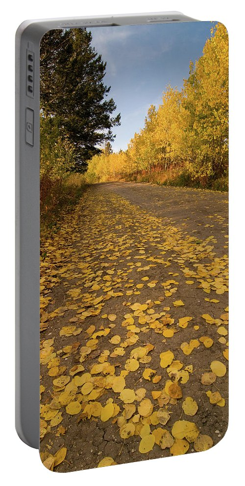 Grand Teton Portable Battery Charger featuring the photograph Paved In Gold by Steve Stuller
