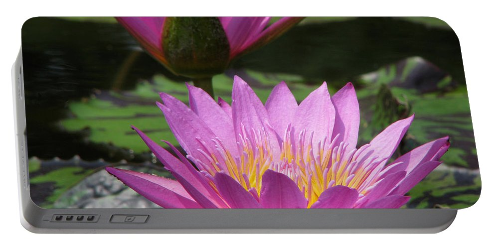 Lillypad Portable Battery Charger featuring the photograph Peaceful by Amanda Barcon
