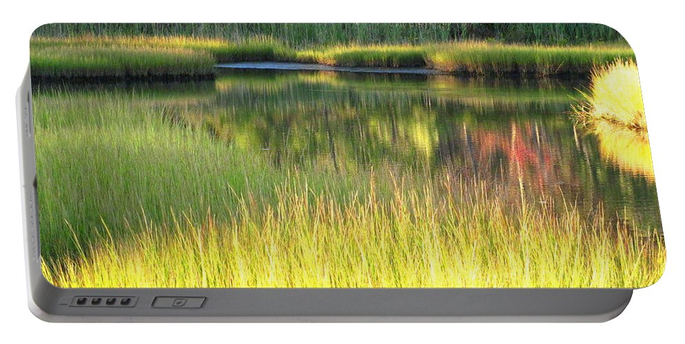 Water Portable Battery Charger featuring the photograph Peaceful Marsh by Sybil Staples