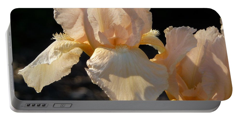 Flower. Iris Portable Battery Charger featuring the photograph Peach Bearded Iris by Ruth Kamenev