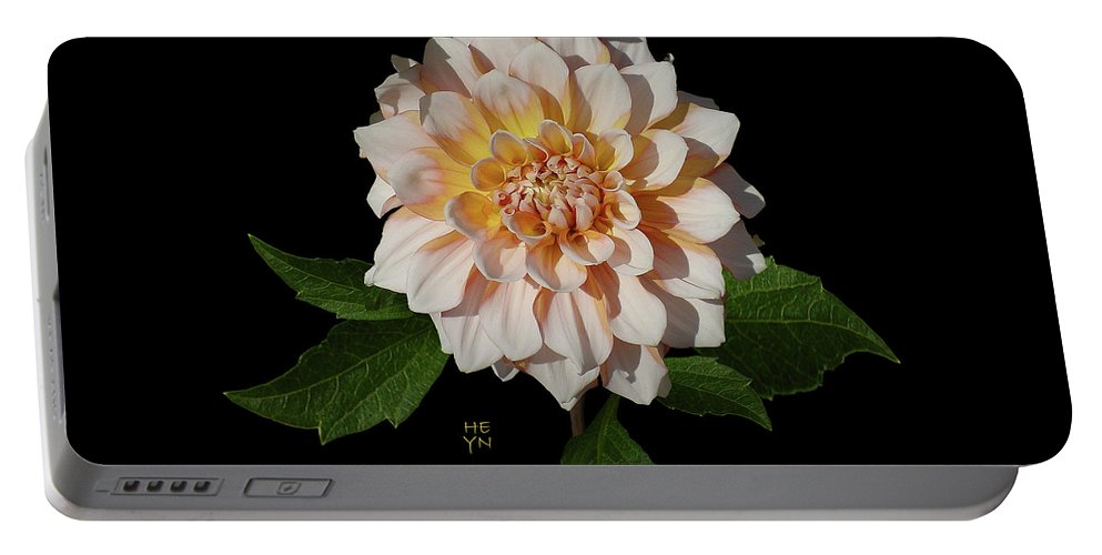 Sunlight Portable Battery Charger featuring the photograph Peach-n-yellow Dahlia Cutout by Shirley Heyn