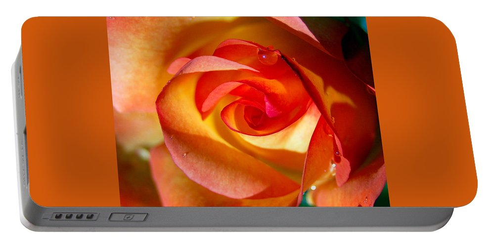 Rose Portable Battery Charger featuring the photograph Peach Rose by Amy Fose
