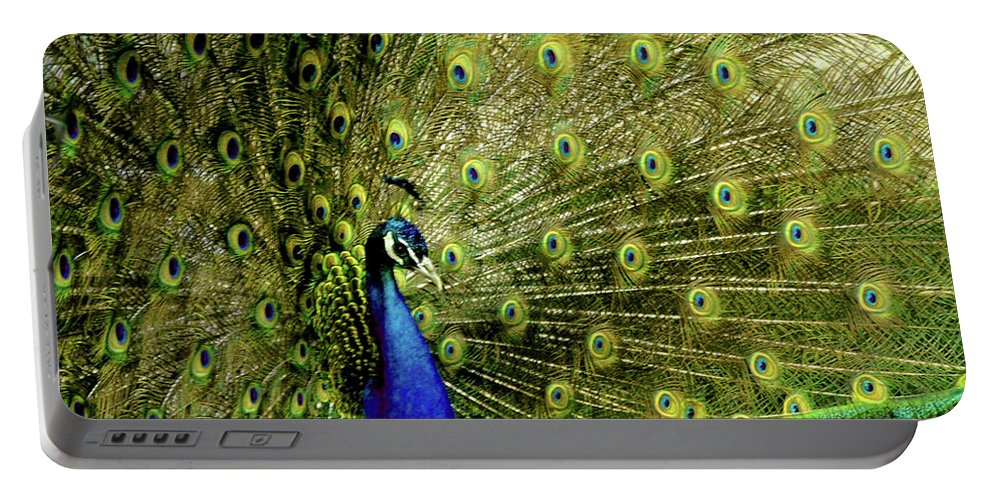 Usa Portable Battery Charger featuring the photograph Peacock At Frankenmuth Michigan by LeeAnn McLaneGoetz McLaneGoetzStudioLLCcom