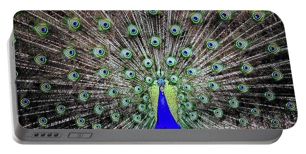 Peacock Portable Battery Charger featuring the photograph Peacock by Vivian Krug Cotton