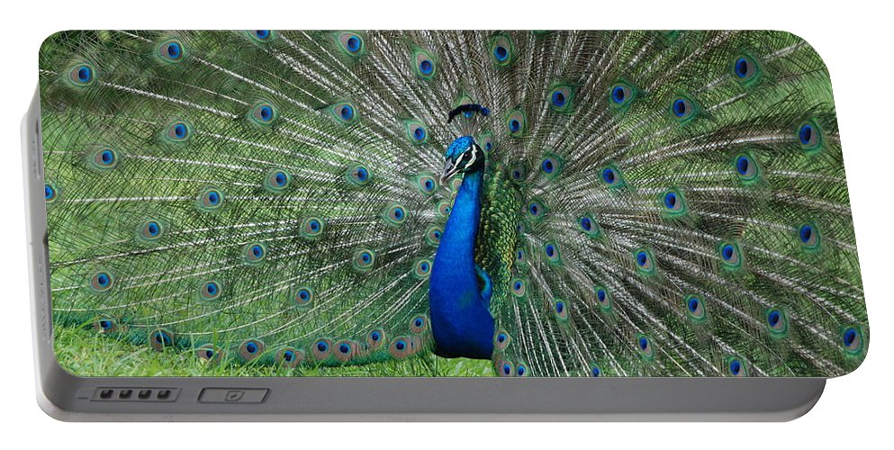 Peacock Portable Battery Charger featuring the photograph Peacocks Glory by Rob Hans