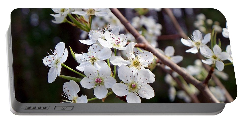 Pear Portable Battery Charger featuring the photograph Pear Tree Blossoms IIi by Betty Northcutt